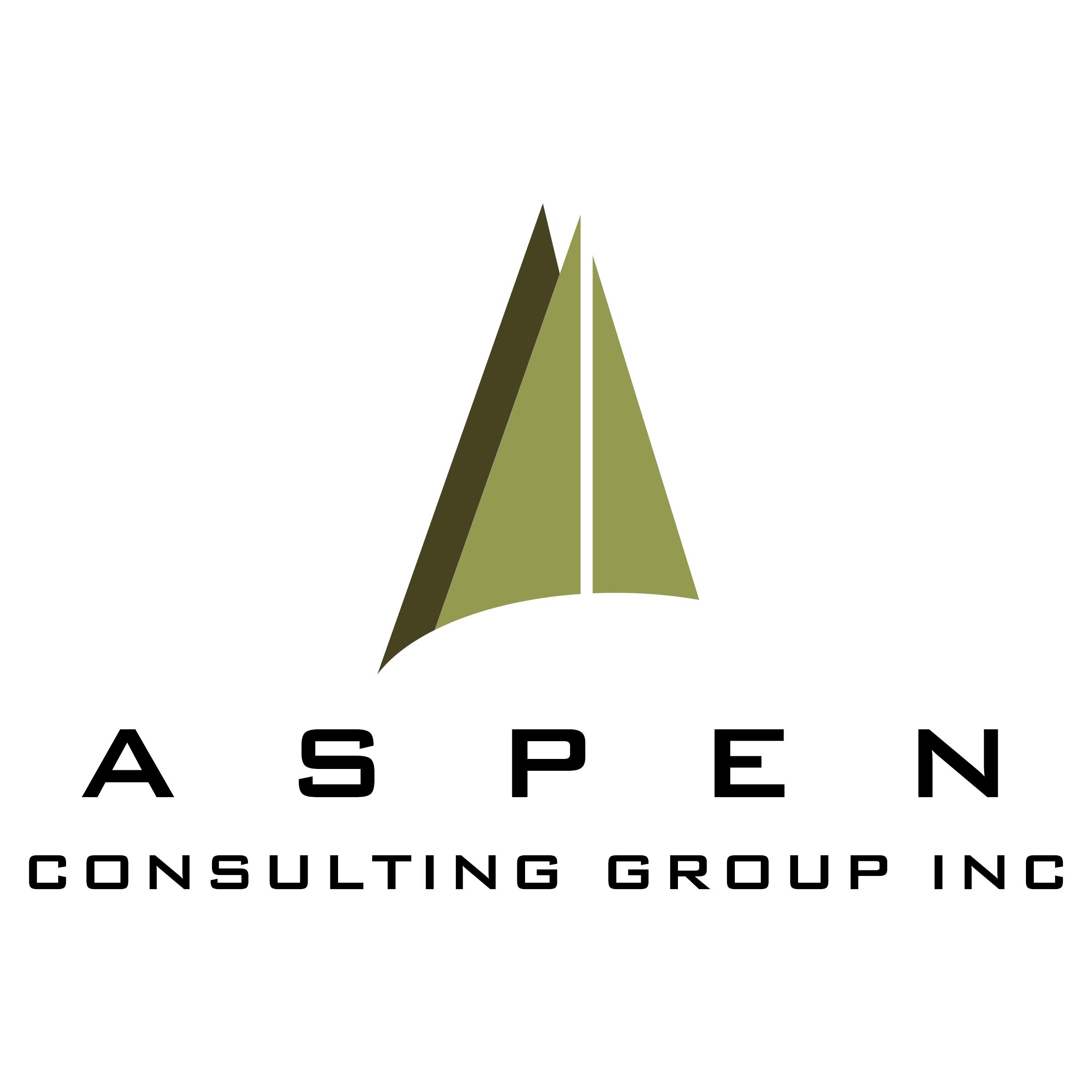 Aspen Consulting